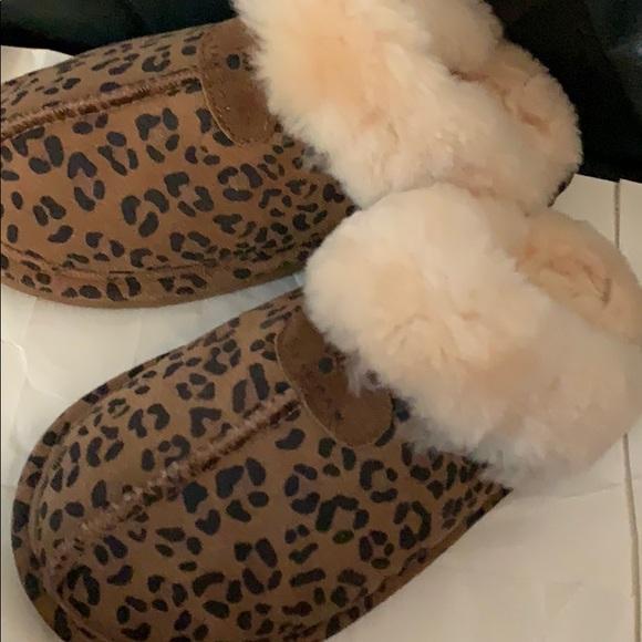 bearpaw leopard slippers